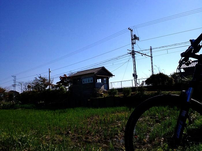 s-CA3G0073.jpg