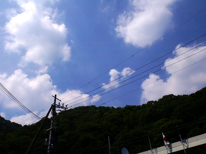 s-20.jpg